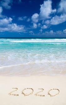 2020 anni sulla spiaggia di sabbia vicino all'oceano