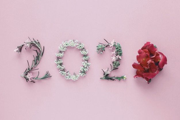 2020 realizzato con foglie e fiori naturali su sfondo rosa, felice anno nuovo benessere e stile di vita sano