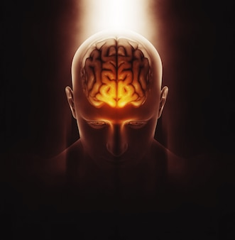 3D rendering di un'immagine medica di una figura maschile con cervello evidenziato e drammatico evidenziato