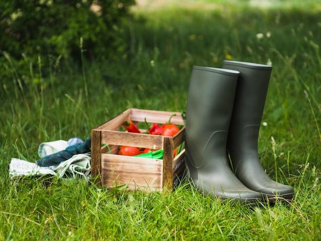 Abbina gli stivali di gomma alti vicino alla cassa di verdure sul prato