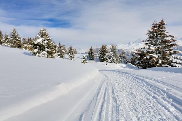 Abeti dell'incrocio del percorso nel paesaggio nevoso in montagna alpina in inverno