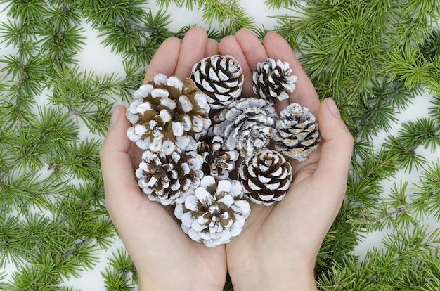 Abeti dipinti in mani femminili su sfondo albero di natale, decorazioni natalizie.
