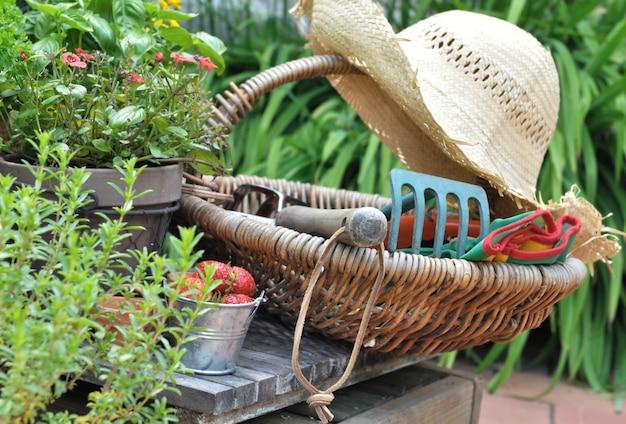 Accessori da giardino