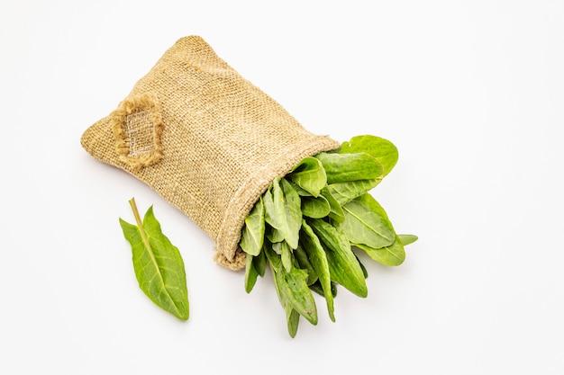 Acetosa verde fresca isolata su fondo bianco