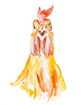 Acquerello di gallo