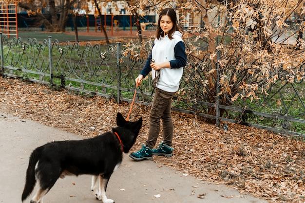 Addestramento degli animali. una ragazza volontaria cammina con un cane da un rifugio per animali. ragazza con un cane nel parco di autunno. cammina con il cane. prendersi cura degli animali.
