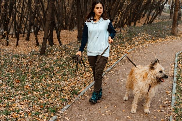 Addestramento degli animali. una ragazza volontaria cammina con un cane da un rifugio per animali. ragazza con un cane nel parco di autunno