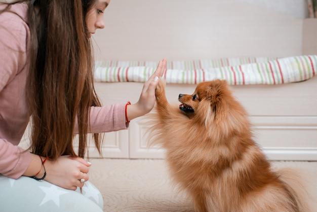 Adolescente con una razza di cane spitz si rallegra con un animale domestico a casa sul pavimento.