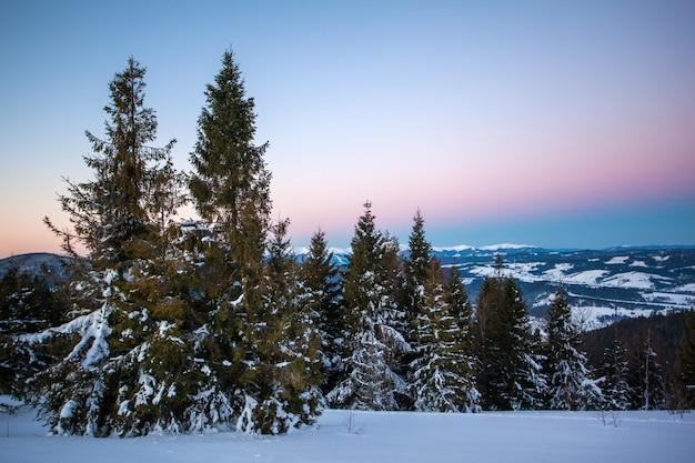 Affascinante paesaggio pittoresco in inverno