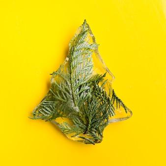 Aghi di conifere nell'albero di ghiaccio