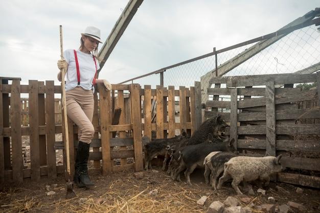 Agricoltore che si prende cura dei maiali in un porcile