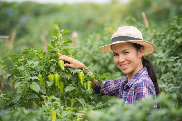 Agricoltore donna di mezza età, con peperoncino biologico a portata di mano