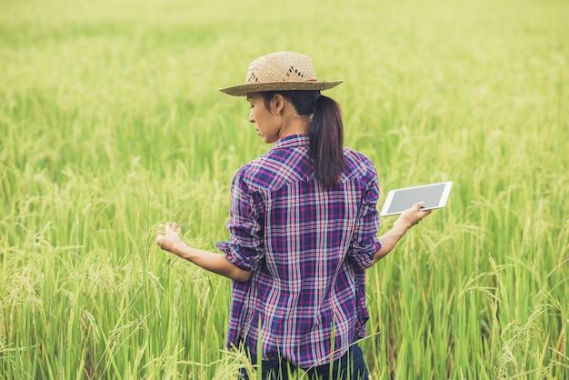 Agricoltore in piedi in un campo di riso con un tablet.