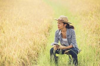 Agricoltore nel campo di riso con smartphone