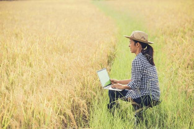 Agricoltore nel giacimento del riso con il computer portatile
