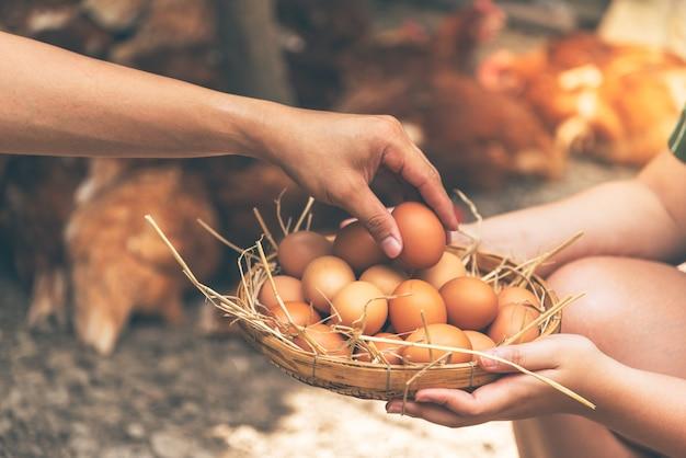 Agricoltore stanno aiutando a raccogliere prodotti a base di uova fresche mettere su un cesto di bambù.