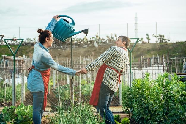 Agricoltura delle coppie che sorridono e che giocano con un annaffiatoio in un campo organico
