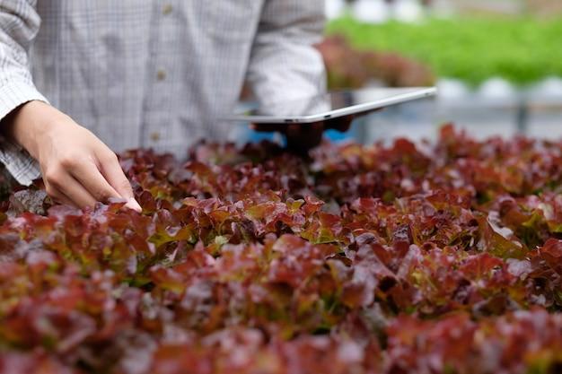 Agricoltura intelligente che utilizza moderne tecnologie in agricoltura.