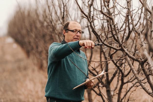 Agronomo caucasico adulto maturo con gli occhiali e l'albero di potatura della lavagna per appunti in frutteto.
