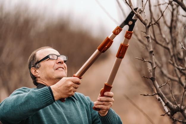 Agronomo caucasico con gli occhiali che pota l'albero da frutto in frutteto.