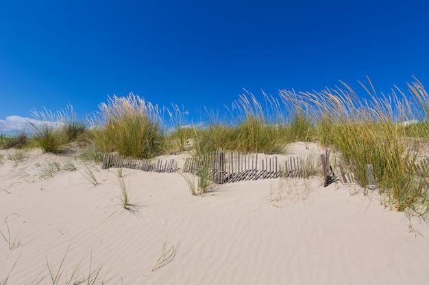 Alaior cala son bou nelle dune di menorca a baleari