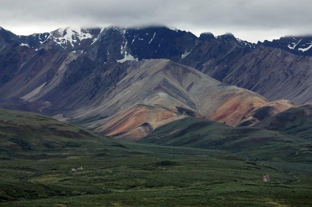 Alaska denali paesaggio