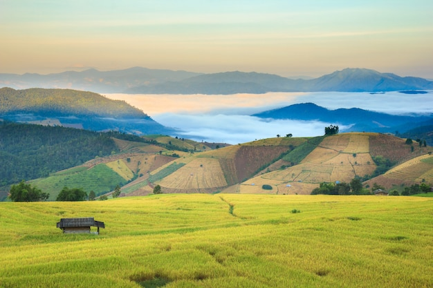Alba a paddy field a terrazze nel villaggio di mae-jam, chiang mai province, tailandia