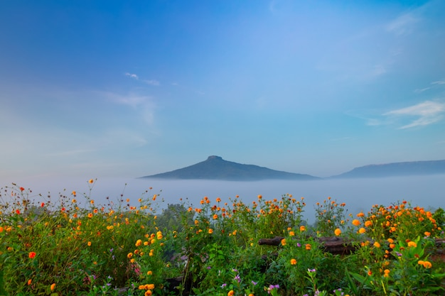 Alba con la nebbia bellissimo paesaggio per rilassarsi in thailandia