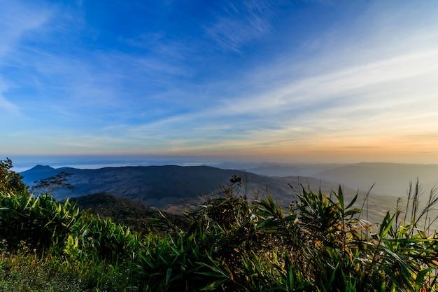 Alba del paesaggio al parco nazionale tropicale loei tailandia di phu rua della catena montuosa