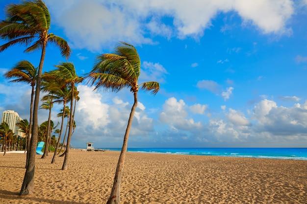Alba florida stati uniti della spiaggia di fort lauderdale