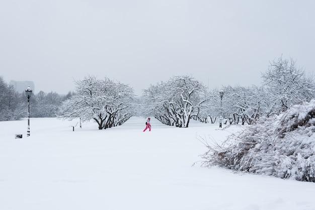 Alberi coperti di neve nel giardino d'inverno. il racconto dell'inverno al kolomenskoye park.