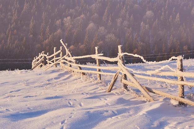 Alberi di paesaggio invernale e recinzione in brina, sfondo con alcuni punti salienti morbidi e fiocchi di neve