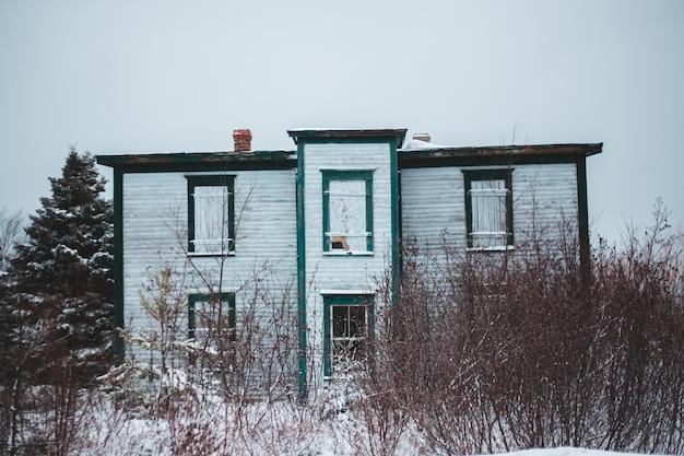 Alberi nudi accanto alla casa bianca durante il giorno