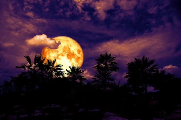 Albero della siluetta della parte posteriore della luna del sangue nella nuvola del mucchio di notte scura