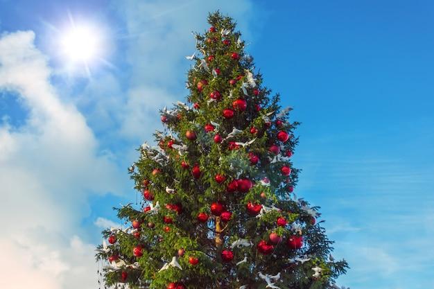 Albero di natale contro il cielo del giorno splendere di sole, decorato con palline di vetro rosse e giocattoli di uccelli piccione.