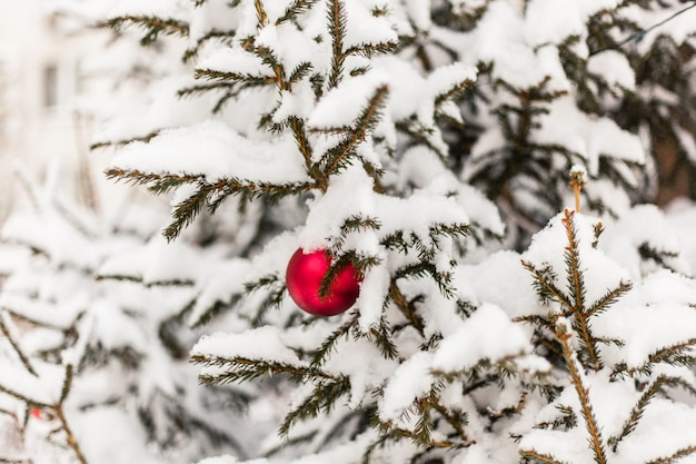 Albero di natale nella neve e palla rossa di natale, neve