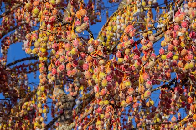 Albero di pasqua di pomerode a santa catarina