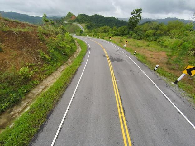 Albero strada della campagna paesaggio bello