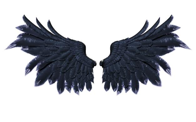 Ali del demone, piume nere dell'ala isolate su fondo bianco
