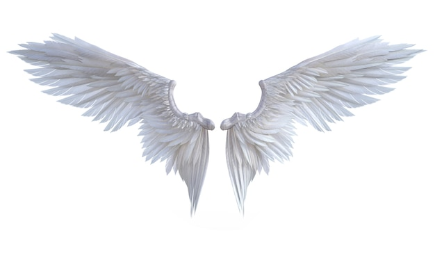 Ali dell'angelo dell'illustrazione 3d, isolato bianco delle piume dell'ala su fondo bianco