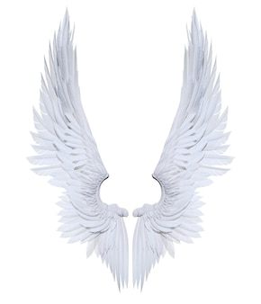 Ali di angelo dell'illustrazione 3d, piume bianche dell'ala isolate su fondo bianco