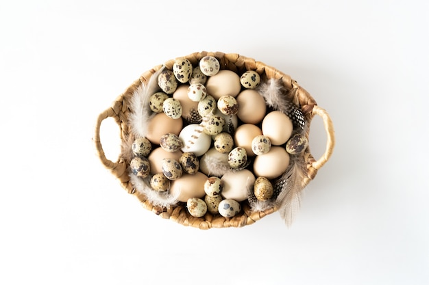 Alimenti naturali sani e agricoltura biologica