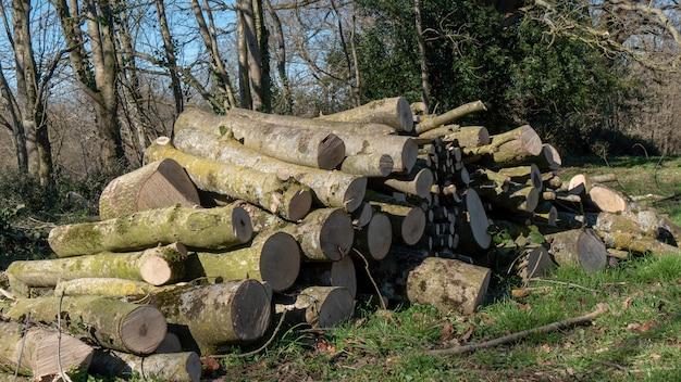 All'aperto, pila di legna per il camino