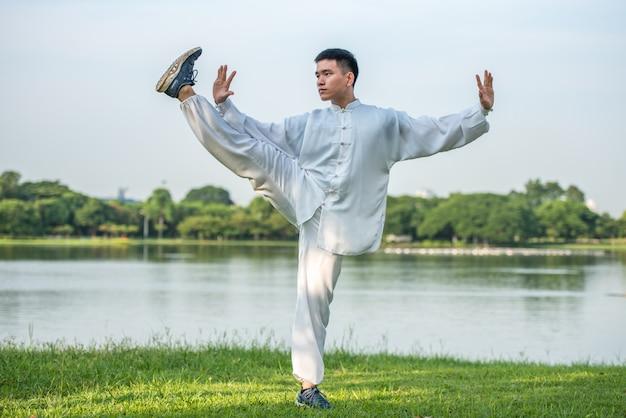 Allenamento nel parco del tai chi chuan, allenamento di arti marziali cinesi.