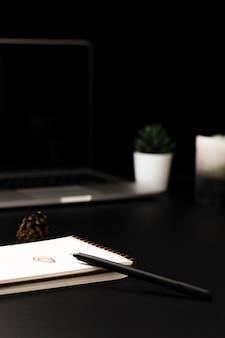 Alto angolo di desktop con piante grasse e notebook
