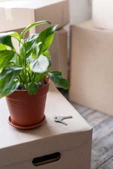 Alto angolo di pianta sulle scatole per il trasloco