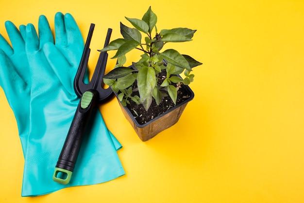 Alto angolo di vaso e forchetta da giardinaggio