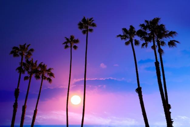 Alto fondo di usa di silohuette del cielo di tramonto delle palme di california