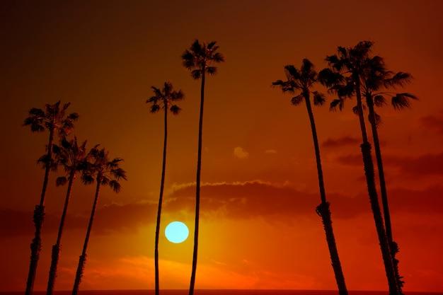 Alto silohuette del cielo di tramonto delle palme di california