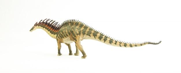 Amargasaurus, dinosauro.